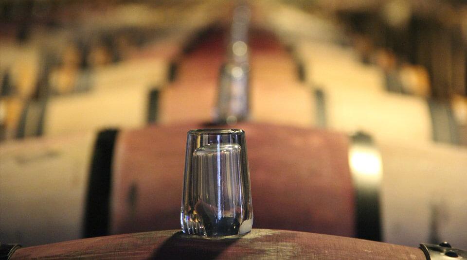 בית פתוח: יינות עילית - ישראל מול העולם